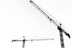 Cranes. CC image from Daniel Foster.